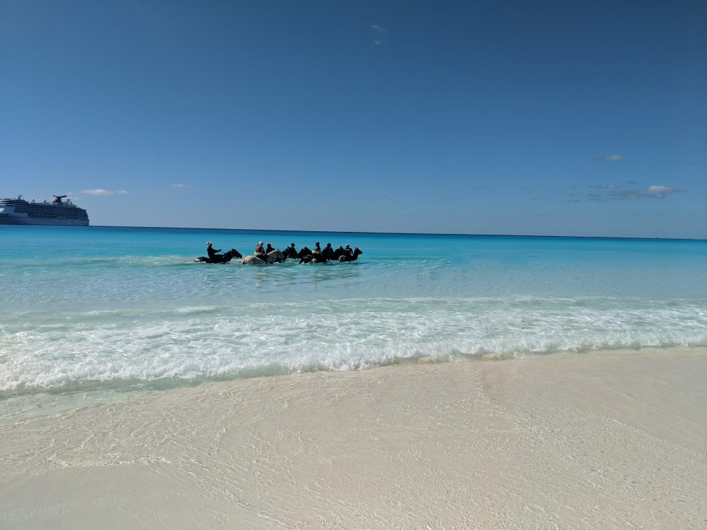 Half Moon Cay Horseback Riding